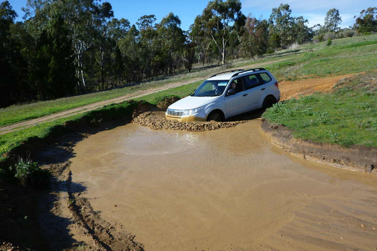 Subaru Forester entering a mud burm.