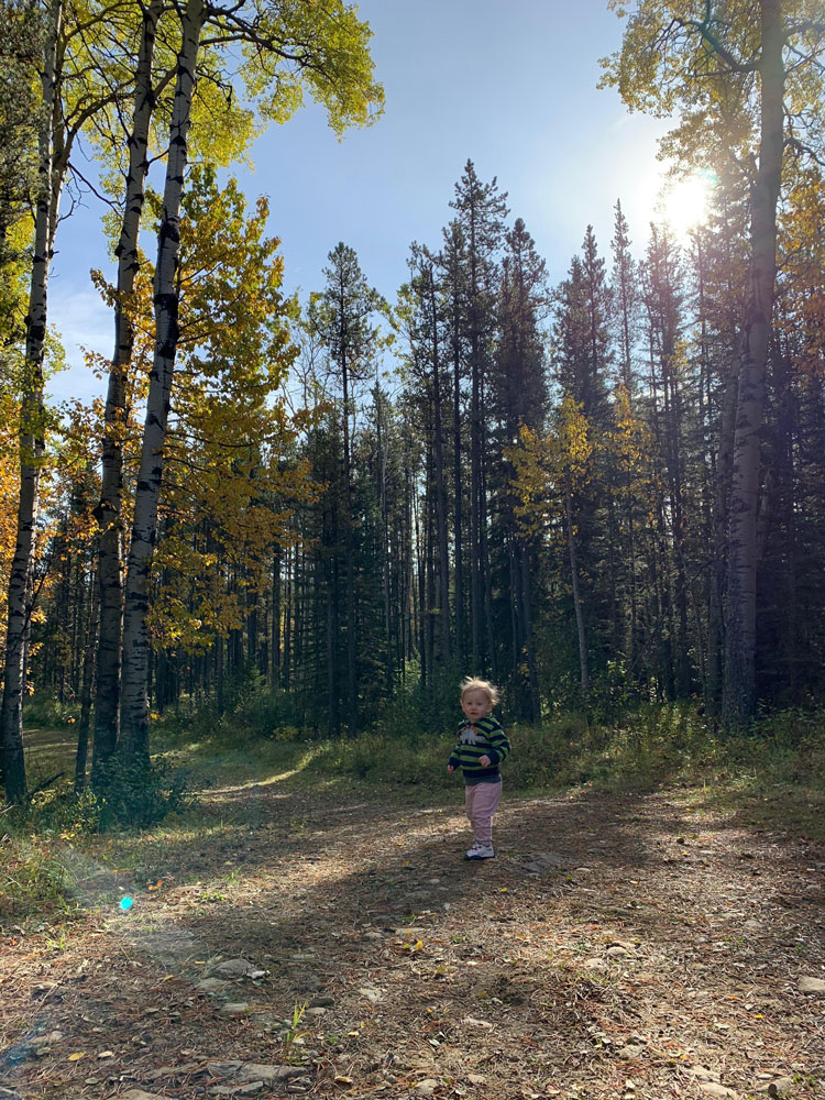Toddler surrounded by trees.
