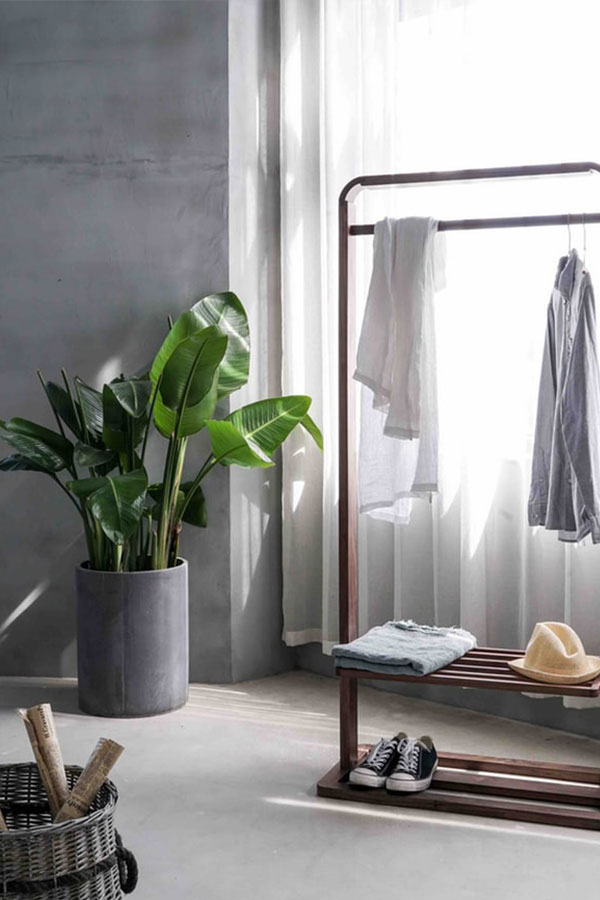 Minimalist room with plant, wardrobe and soft grey tones.