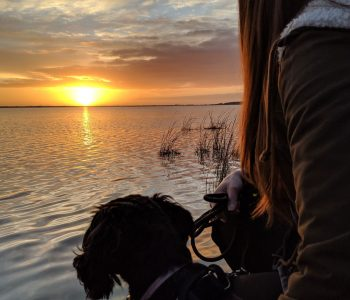 Woman and dog staring at sunset.