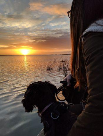 Woman and dog staring at sunset.